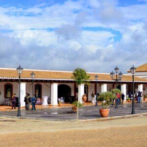 Complejo de Celebraciones Finca La Marquesa 14